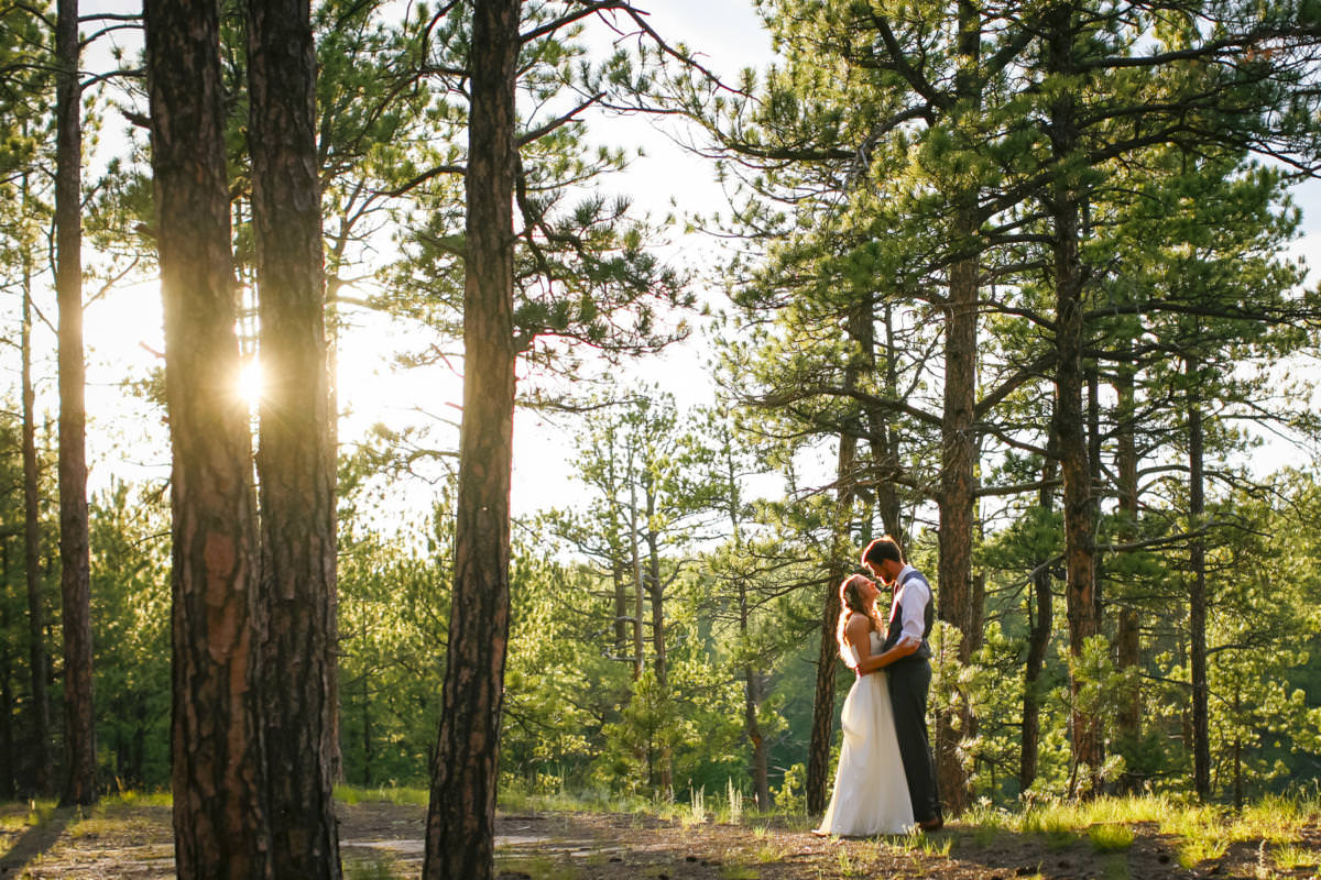 Bride and groom embracing in a forest of lodge pole pines at sunset.