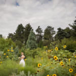Bride and groom in Rock Alpine Garden at Denver Botanic Gardens