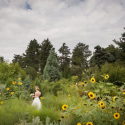 Bride and groom in Rock Alpine Garden at Denver Botanic Gardens
