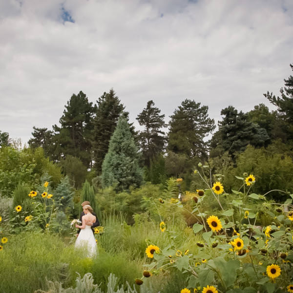 Liz and Andy's Denver Botanic Gardens Wedding Celebration