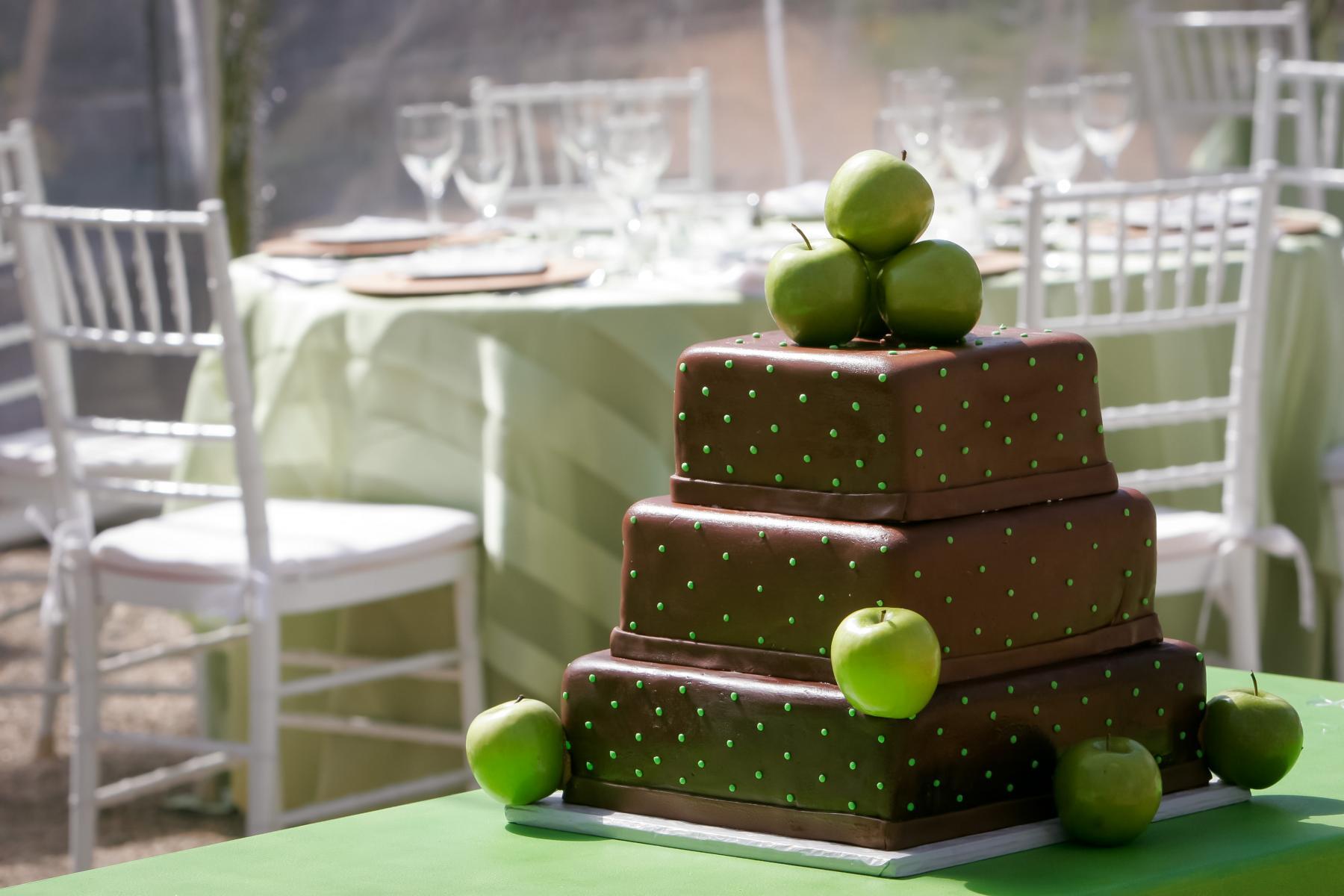 backyard weddings in colorado cayton photography